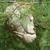 Thumb-1321315024
