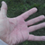 Thumb-1341879573