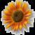 Thumb-1374108140
