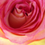 Thumb-1375930285