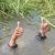 Thumb-1396023539