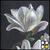 Thumb-1422814984
