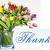 Thumb-1465816297
