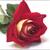 Thumb 1422397219