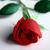 Thumb 1495210717